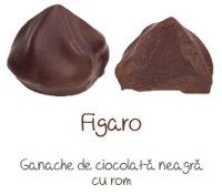Figaro 2